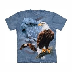 T-shirt faded flag and eagles MT3718